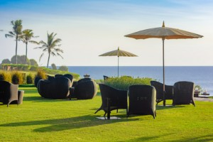 Outdoor setting on the grass overlooking the sea.